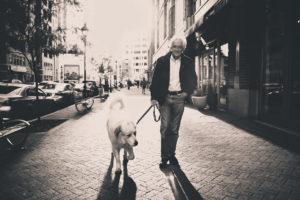 Hundetraining mit Leine